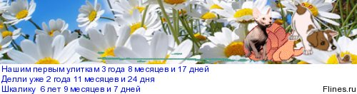 ~liquid snails~ - Страница 3 1003301