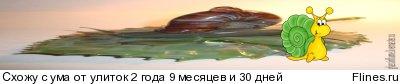 ~liquid snails~ - Страница 3 1022131
