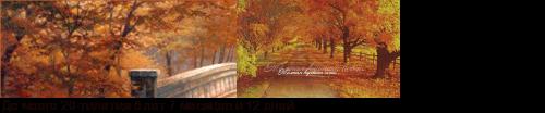 ������� ��� ������� � ������, �������� �� ������� ���� - Flines.ru