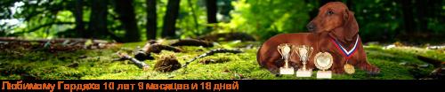 [img]http://flines.ru/timelines/1100295.png[/img]