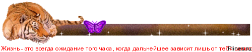 1109743.png