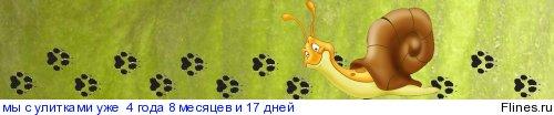 Окрас сутуралиса 1128243