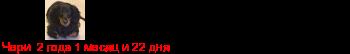 [img]http://flines.ru/timelines/1139383.png[/img]