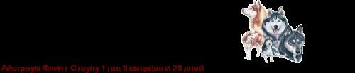 Айстраум Флора (Парашютистка) - Страница 3 1142211