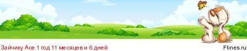 "Питомник ""Incipita Vita Shibas""Латвия - Страница 11 1146848"