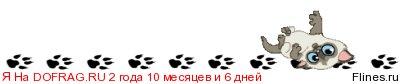 http://flines.ru/timelines/1173085.jpg