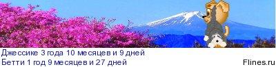 Астальдо Нармо Евразия - Страница 5 1186955