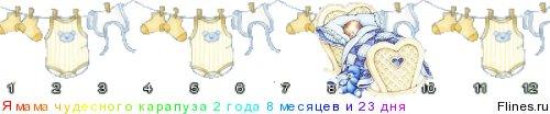 Содержание Limicolaria unicolor 1188352