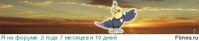 http://flines.ru/timelines/1190494.jpg