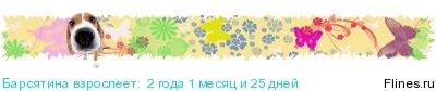 [img]http://flines.ru/timelines/1224245.jpg[/img]