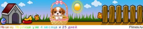 Ветеринар в Комсомольске-на-Амуре