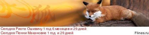Печальный опыт покупки щенка в питомнике Хандзимэмасите - Страница 7 1406045