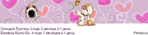 http://flines.ru/timelines/1412685.jpg
