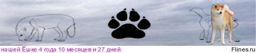 DZINKO TAIE`TO OT POLYANSKIKH (Вук) 1418874