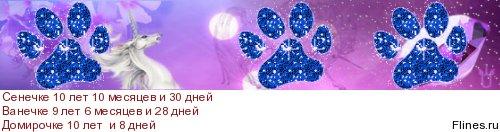 http://flines.ru/timelines/1430825.jpg