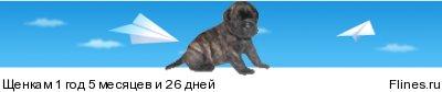 http://flines.ru/timelines/1431627.jpg