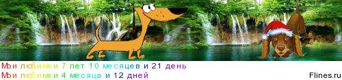 [img]http://flines.ru/timelines/1433340.jpg[/img]