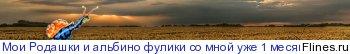 Цепеи  1434697