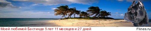 http://flines.ru/timelines/265098.jpg