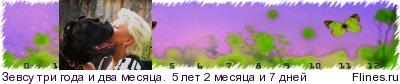 http://flines.ru/timelines/271782.jpg