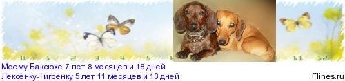 [img]http://flines.ru/timelines/344803.jpg[/img]