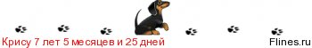 [img]http://flines.ru/timelines/346560.jpg[/img]