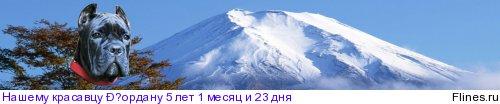 http://flines.ru/timelines/393972.jpg