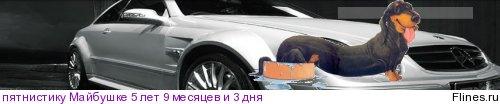 [img]http://flines.ru/timelines/469826.jpg[/img]