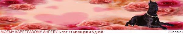 http://flines.ru/timelines/489411.jpg