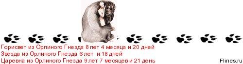 flines.ru/timelines/518796.jpg
