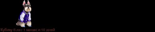 Кавказский волкодав, или кавказская пастушья собака 592174