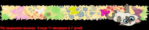 http://flines.ru/timelines/708773.png