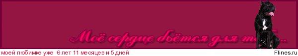 Кане Пер Ла Вита Парейро (Юджин) - Страница 6 727163