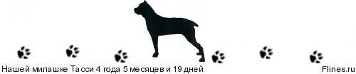 http://flines.ru/timelines/739210.jpg