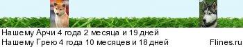 ПЛАНЕТА СИБА ИНУ 2013 - Страница 5 749786