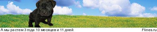 http://flines.ru/timelines/756359.jpg