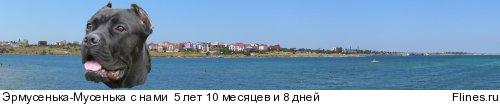 http://flines.ru/timelines/756380.jpg
