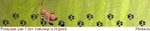[img]http://flines.ru/timelines/776196.jpg[/img]