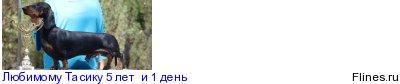 [img]http://flines.ru/timelines/873953.jpg[/img]