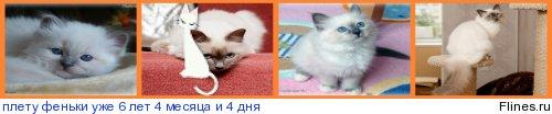 http://flines.ru/timelines/896647.jpg