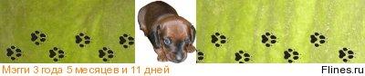 [img]http://flines.ru/timelines/900714.jpg[/img]