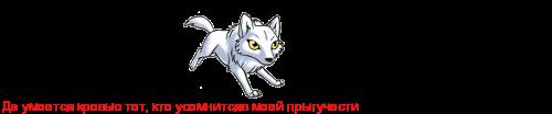 *Загадочный волк* 917541