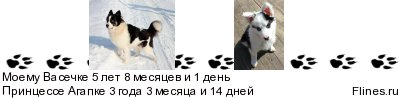Артик Трэвел Нахот (Васечка) и Агапка Звёздное Небо - Страница 5 917837