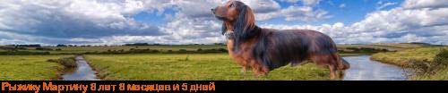 [img]http://flines.ru/timelines/926150.png[/img]