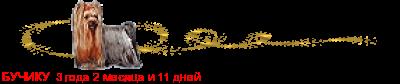 Линейки для форумов и блогов, линеечки на рабочий стол, линеечки -  Flines.ru