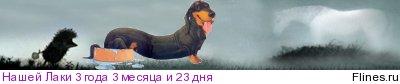 [img]http://flines.ru/timelines/985478.jpg[/img]